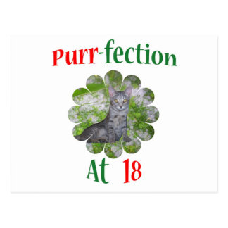 18 Purr-fection Postcard