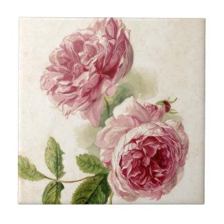 18th Century Pink Rose Study Ceramic Tile