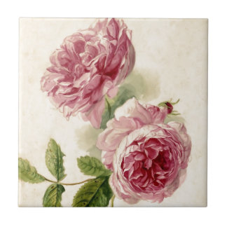 18th Century Pink Rose Study Small Square Tile