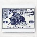 1901 Pan-American Expo Mousepads