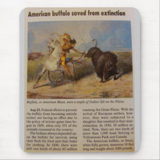 1902  American Buffalo Saved from Extinction Mouse Pad