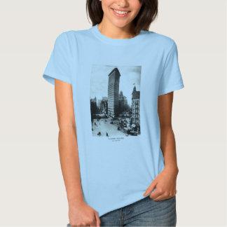 1903 Flatiron District, New York City T-Shirt