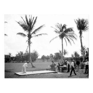 1904 Golfing Palm Beach Fl. Postcard