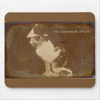 1906 The Commanding Officer dressed cat RPPC Mouse Pad