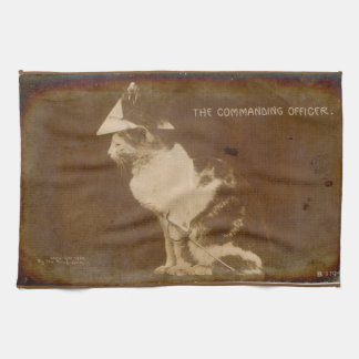 1906 The Commanding Officer dressed cat RPPC Towel