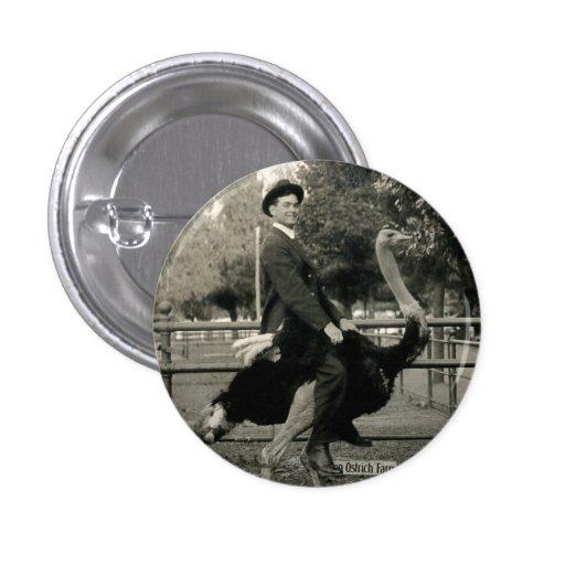 1910 Ostrich Riding 1 Inch Round Button