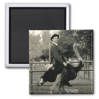 1910 Ostrich Riding Magnet