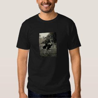 1910 Ostrich Riding T Shirt