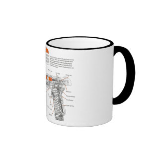 1911 inner workings ringer mug