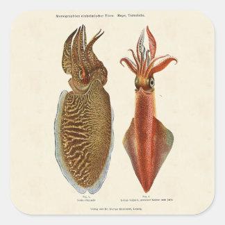 1913 Sepia und Octopus Stickers