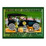 1914 Chandler Automobile Poster Postcard