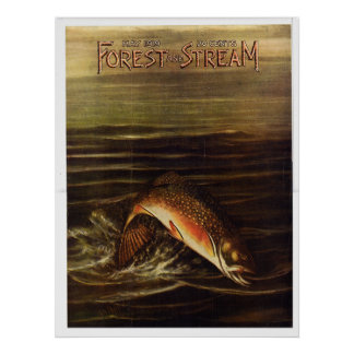1919  Forest and Stream Poster