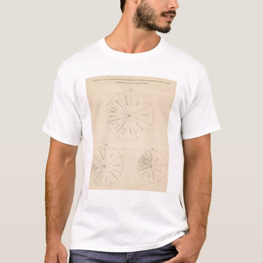 191 Value manufactured products 1880-1900 T-Shirt