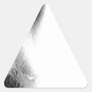 1920438_283228078500499_49635679_n.jpg pegatina triangular