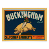 1920's Buckingham Pear Ad-16x20 Poster