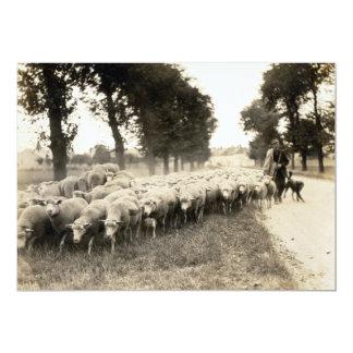 "1921 French Shepherd 5"" X 7"" Invitation Card"