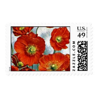 1922 Iceland Poppy Illustration Stamp