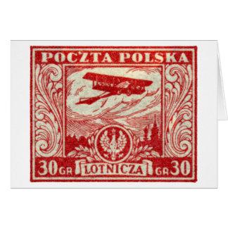 1925 30gr Polish Airmail Stamp Cards