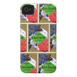 1925 Superieure Flowers of France perfume iPhone 4 Cases