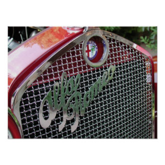 1929 Alfa Romeo 1750 Roadster Print