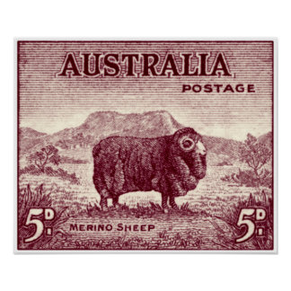 1934 Australian Merino Sheep Poster