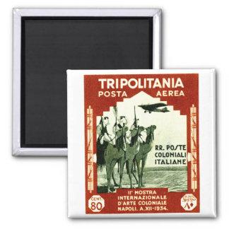 1934 Tripolitania 80 centesimi stamp Fridge Magnets