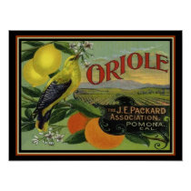 1940s Oriole Fruit Label Ad Poster