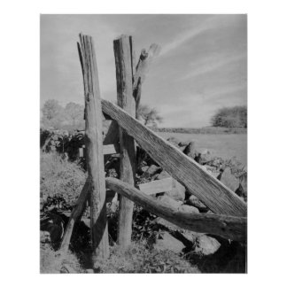 1940's Photograph Weathered Wooden Fence Poster