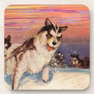 1940s Siberian husky sled dogs doing their thing Beverage Coaster