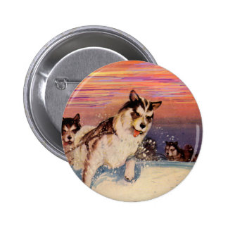 1940s Siberian husky sled dogs doing their thing 2 Inch Round Button