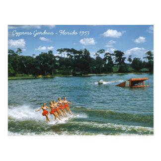 1950's Cypress Gardens Water Ski Show Aqua Maids Postcard