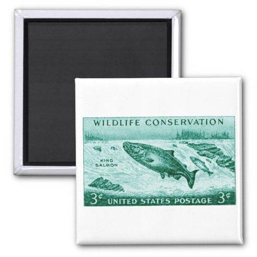 1956 protección de la fauna, salmón imán para frigorifico