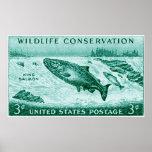 1956 protección de la fauna, salmón poster