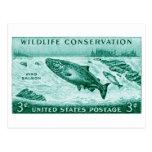 1956 protección de la fauna, salmón tarjetas postales