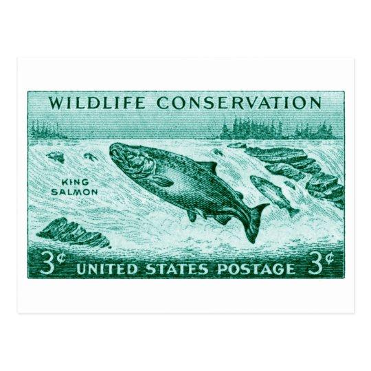 1956 Wildlife Conservation, Salmon Postcard