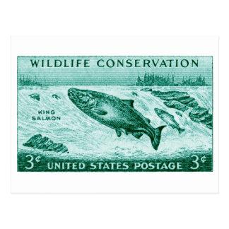 1956 Wildlife Conservation, Salmon Postcards