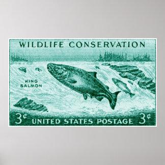 1956 Wildlife Conservation, Salmon Poster