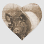 1960s Pig Sticker