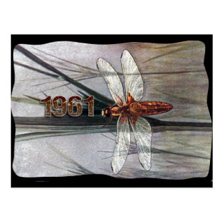1961 Dragonfly Postcard