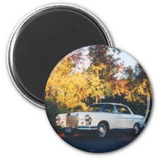 1965 Mercedes-Benz 220SEb coupe Magnet