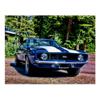 1969 chevy super sport SS Camaro Postcard