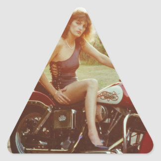 1980s Motorcycle Pinup Girl Triangle Sticker