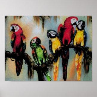 $19.95 Talking Parrots ~ Print Poster print