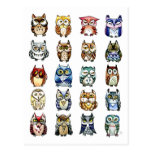 19 and 1 Cat and Owls Post Card