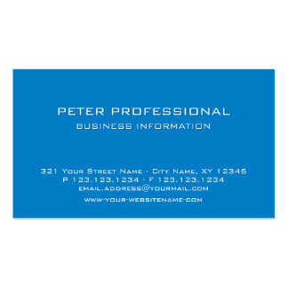 19 Modern Professional Business Card sky blue colo