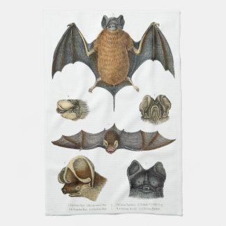 19th C. Bat Print Hand Towels