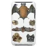 19th C. Bat Print iPod Case-Mate Cases