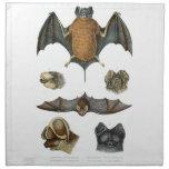 19th C. Bat Print Printed Napkin