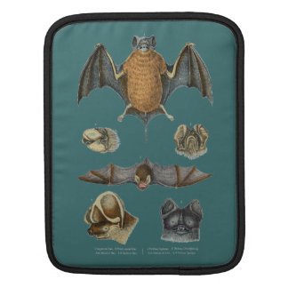 19th C. Bat Print Sleeves For iPads