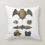 19th C. Bat Print Throw Pillow